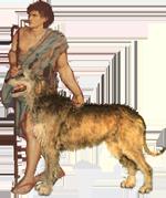 boydog1