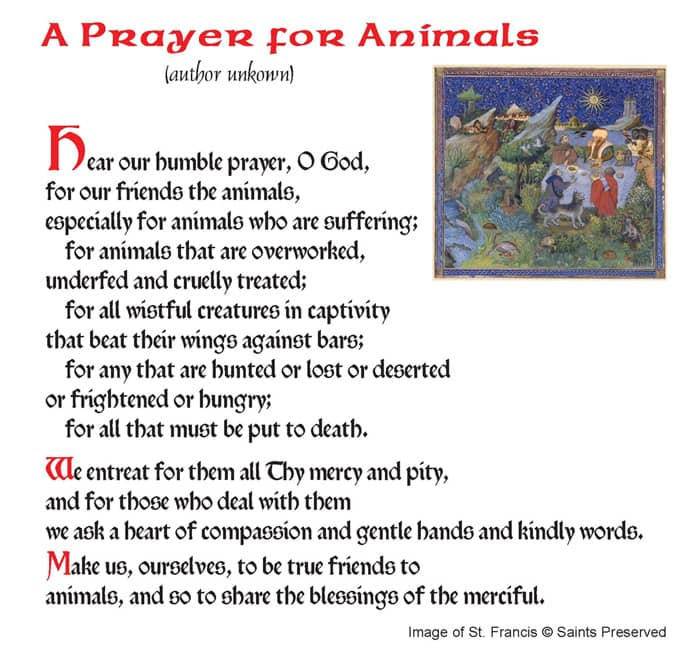 St. Roch's prayer